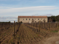 Maguelone001