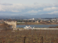 Maguelone005